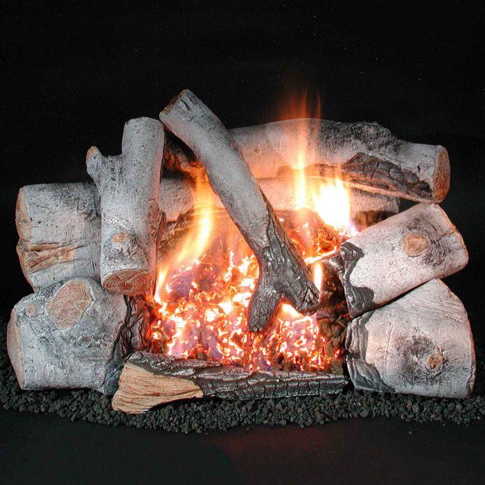 Rasmussen HB-C8 Chillbuster Evening Embers Ventless Double Burner with Birch Wood