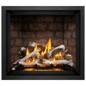 Napoleon EX42xTEL Elevation X Series Electronic Ignition 42-Inch Direct Vent Gas Fireplace